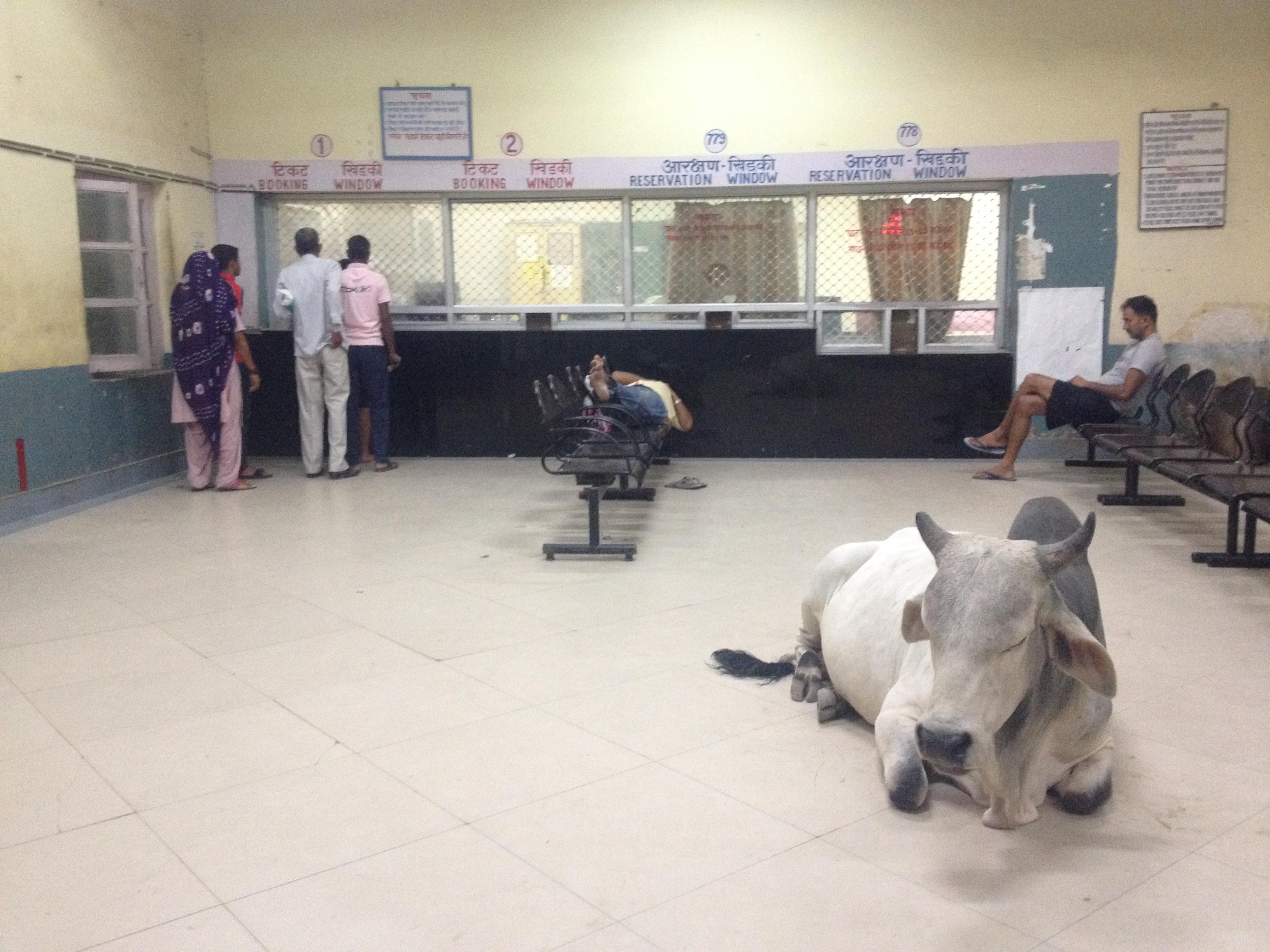 Como se vestir na Índia